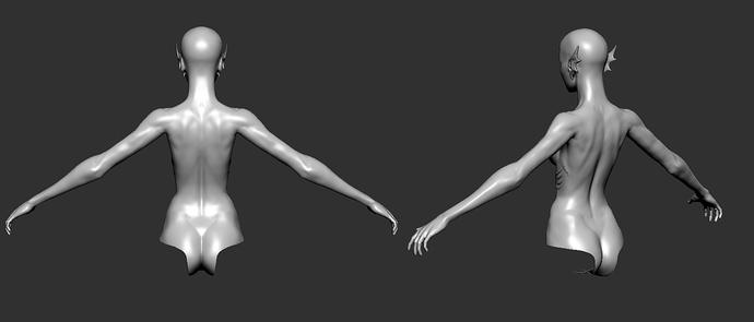 bodywork4