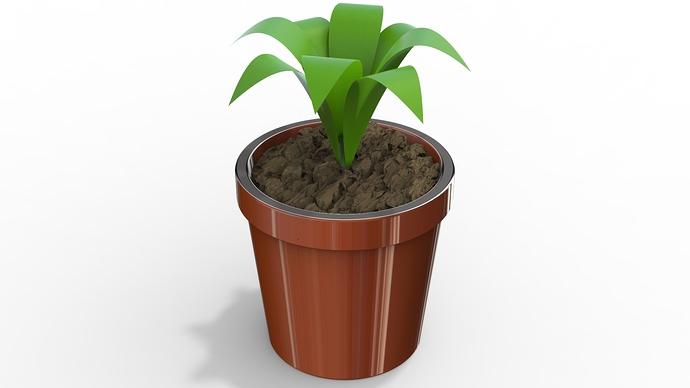 3December2020_15_plants.159