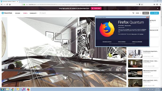 Sketchfab_Bug_Firefox